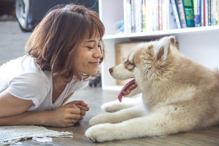 Chica y perro husky cachorro tirados en el suelo