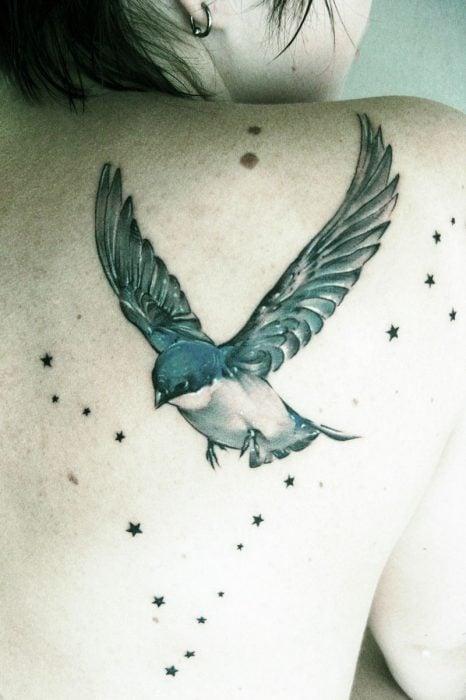 Tatuaje de golondrina y estrellas en la espalda