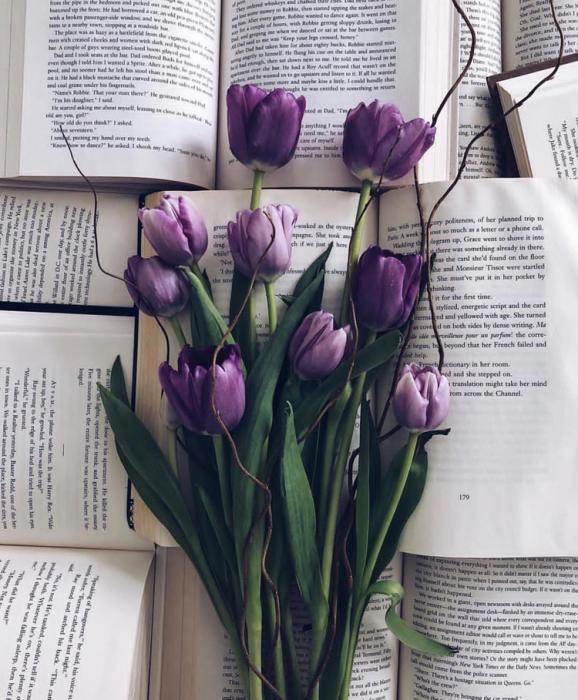 ramo de tulipanes morados entre libros