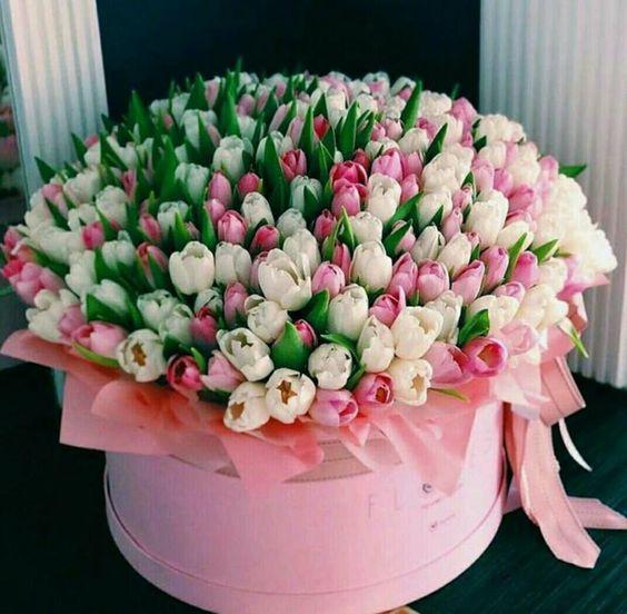 enorme caja con flores tulipanes rosas y blancos