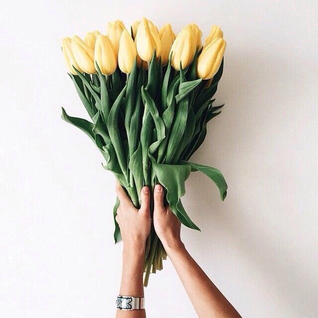 manos con ramo de tulipanes amarillos