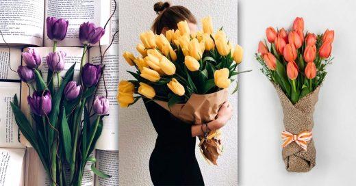 13 Razones para regalar más tulipanes que rosas; la flor más elegante