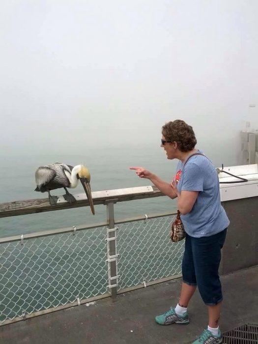 Abuela regañando a cigüeña después de que esta la picó