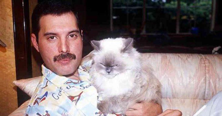 Freddie Mercury sosteniendo a uno de sus gatos