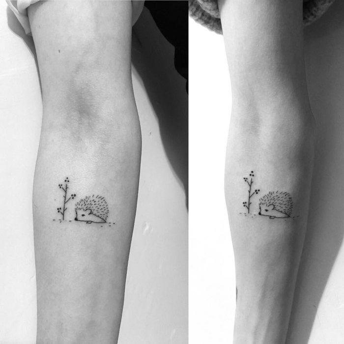 tatuajes de puercoespín y planta