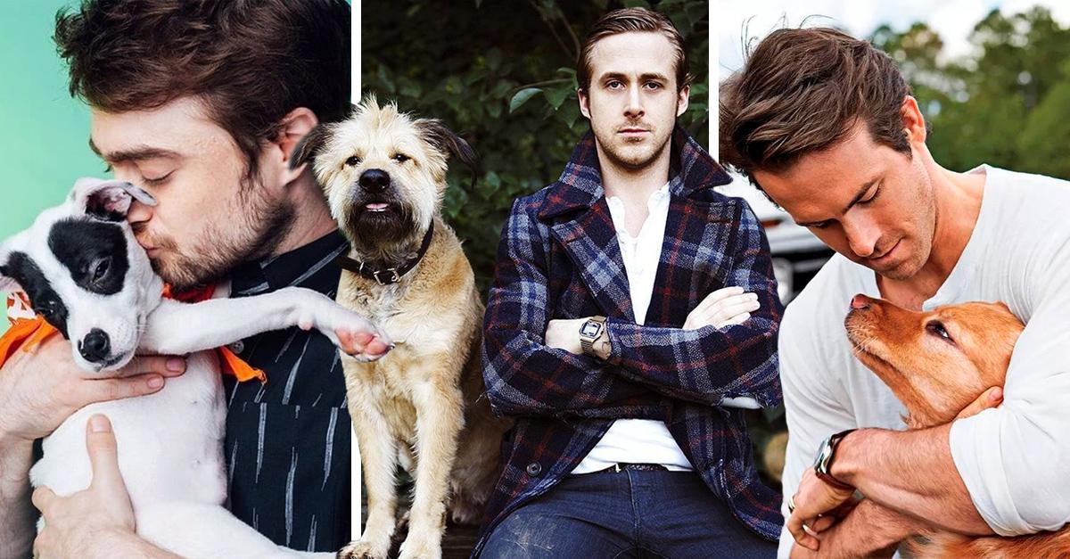 15 Famosos que se vuelven perfectos porque tienen un perro como mascota