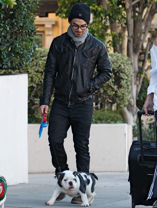 Famosos paseando a sus perros en la calle