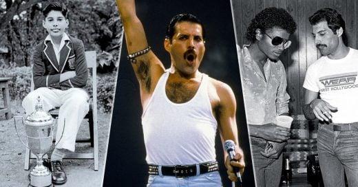 10 Datos que no conocías de Freddie Mercury