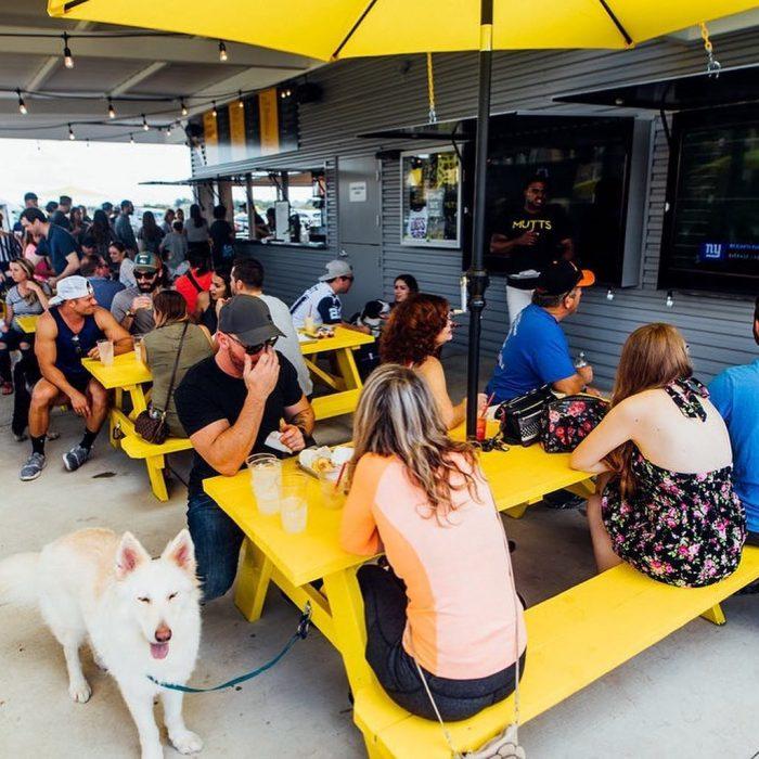 restaurante con perro y mesas amarillas