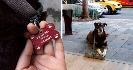 Este perrito solo quería pizza pero sus dueños creían que ya estaba muy gordo