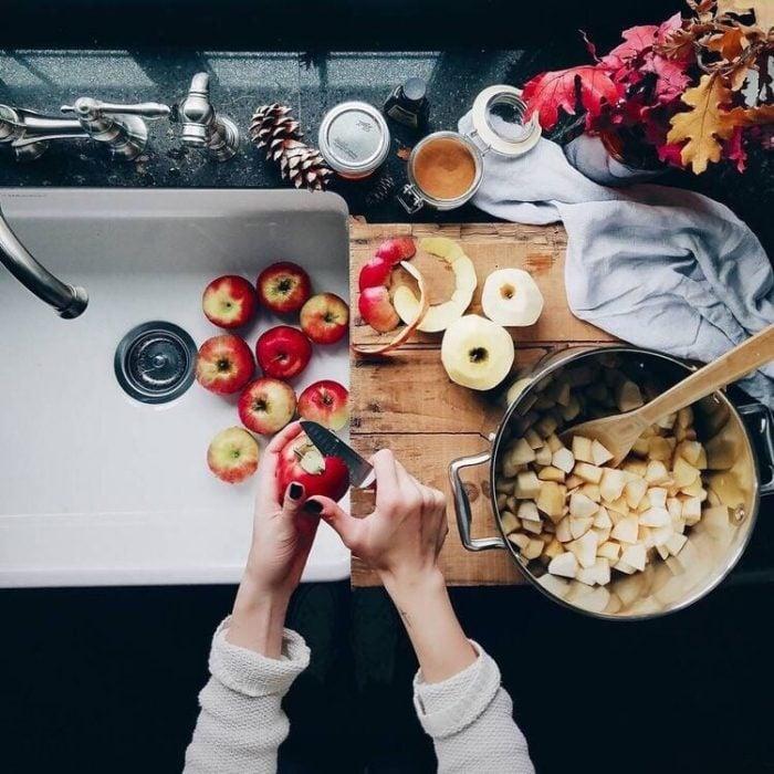 plato con manzanas cortadas en trozos