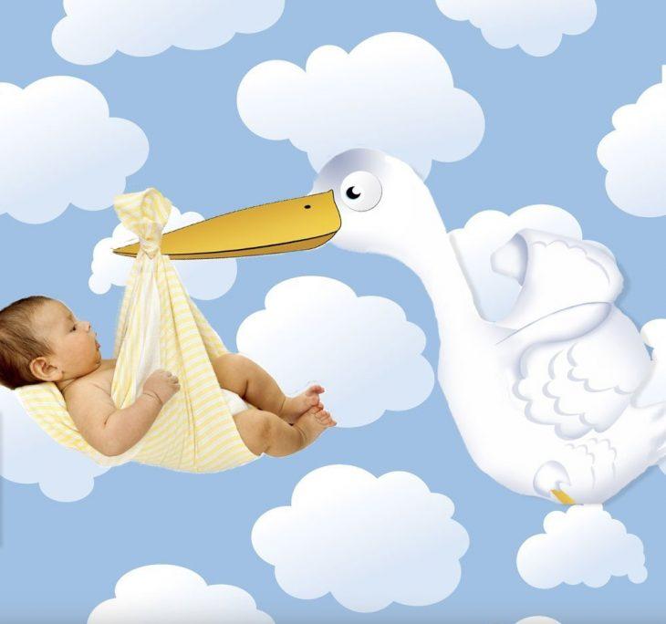 Ilustración de bebé que es cargado por una cigüeña
