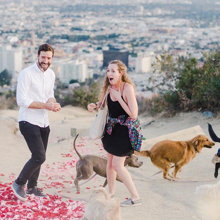 chica sorprendida al ver perros