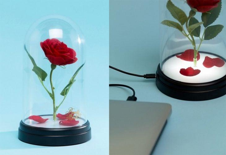 lámpara con rosa de la bella y la bestia