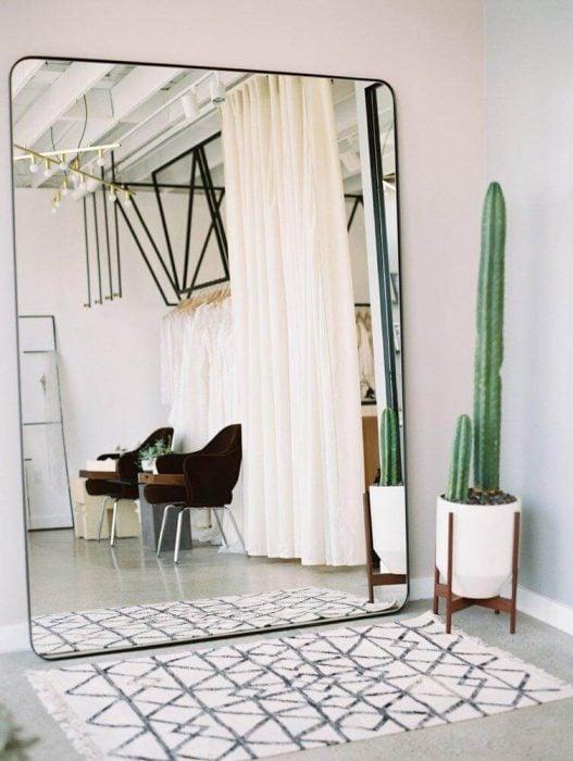 espejo con bordes redondos y cactus