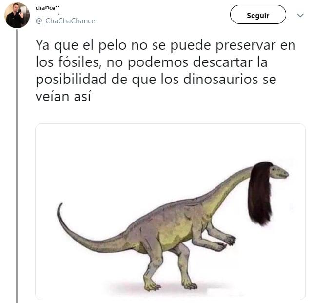 ecplicación en twitter de que los dinosaurios tienen pelo