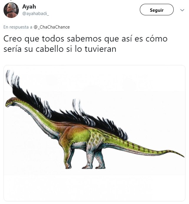 explicación en twitter de que los dinosaurios tienen pelo