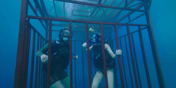 chicas buceando bajo el mar