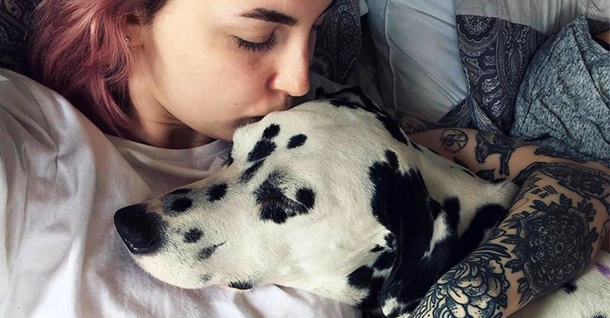 Ya puedes solicitar reducción de horario laboral para cuidar de tu mascota en casa