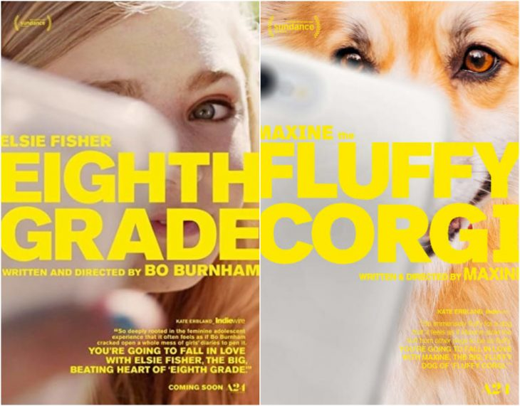 Poster de la película Fluffy