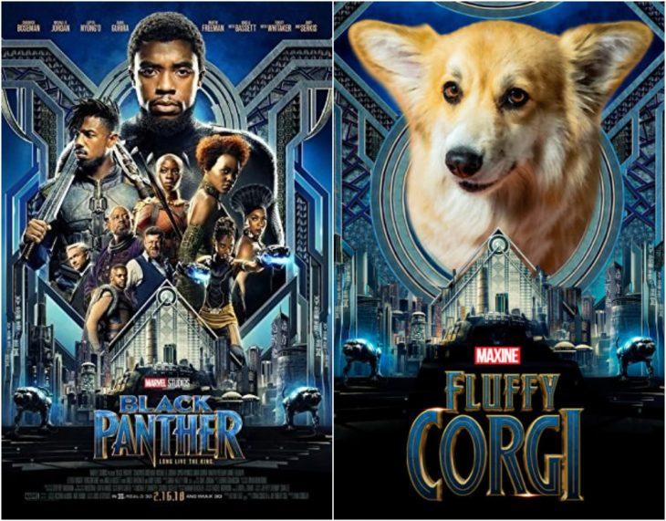 Poster de la película Black Panther