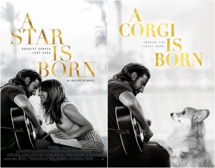 Poster de la película Star is a born