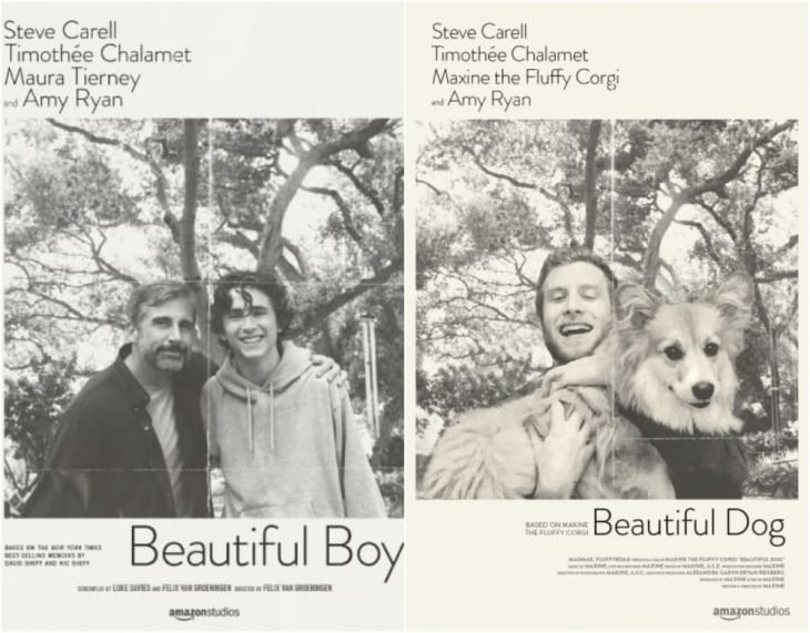 Poster de la película Beautiful boy
