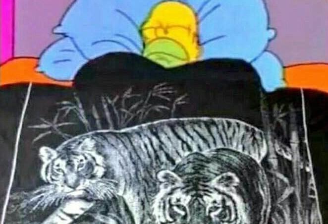 caricatura de hombre con cobija de tigre