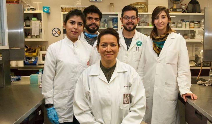grupo de científicos en un laboratorio