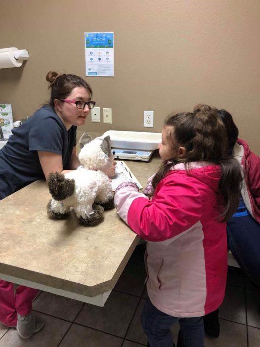 Niña con autismo lleva a su gato siamés de peluche enfermo al veterinario