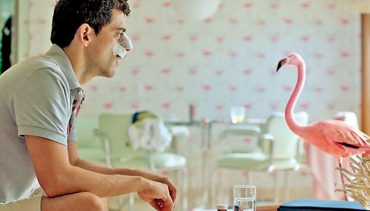 hombre charlando con un flamingo