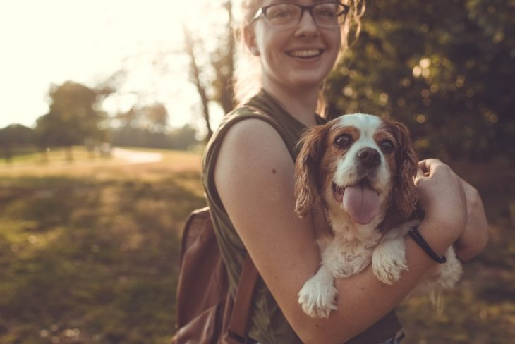 Tu perro puede llegar a odiar a quien te rompe el corazón