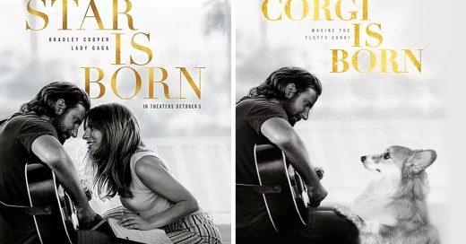 Fotógrafo y su corgi recrean las portadas de las películas más famosas y el resultado es adorable