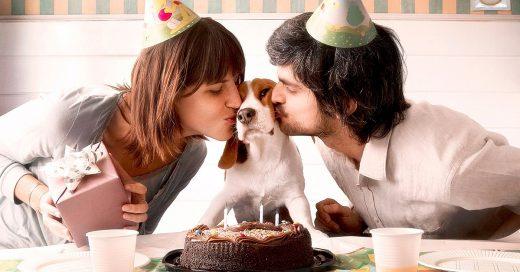 Tener' perrihijos' podría ser dañino para tu salud y la de tu perro