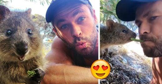 Chris Hemsworth roba suspiros en Instagram junto a un Quokka