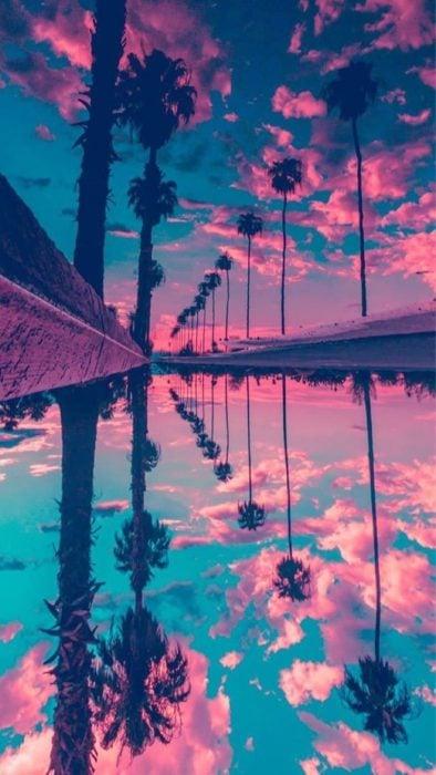 Fondo de pantalla de celular que tiene un efecto espejo de una playa con palmeras y el cielo de color azul con rosa