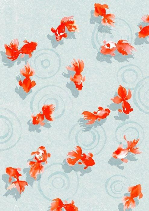 Fondo para celular, wallpaper bonito de peces japoneses anaranjados nadando