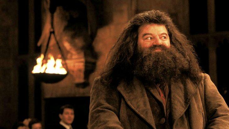 Escena de la saga de Harry Potter donde aparece Hagrid interpretado por Robbie Coltrane