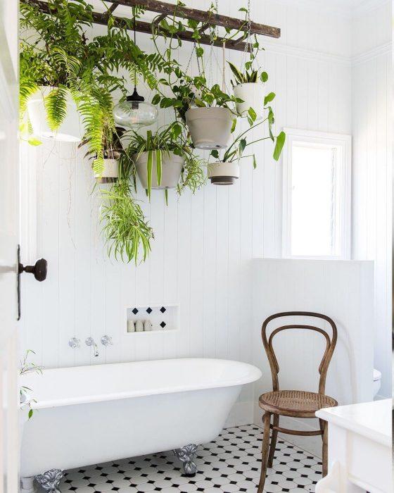 Cuarto de baño con una tina blanca y una silla de color café que adornan el suelo mientras que las plantas de diferentes tipos cuelgan sobre la tina
