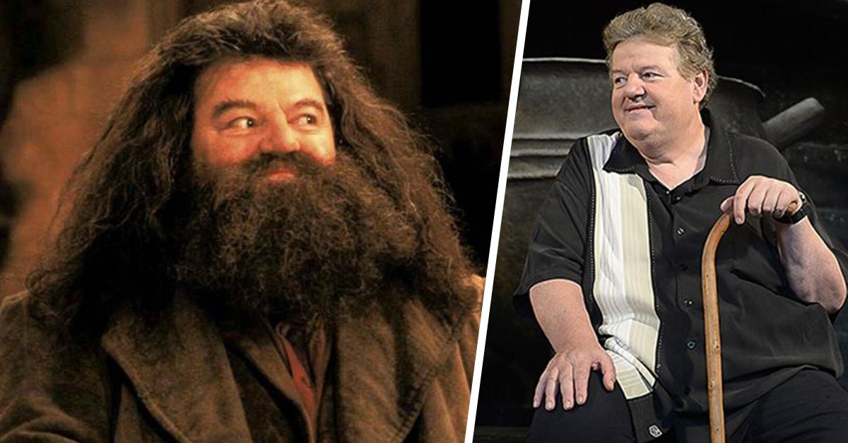 'Hagrid' ahora está en silla de ruedas a causa de la osteoartritis