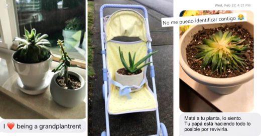 Portada Hija pide a su mamá que cuide a sus plantas