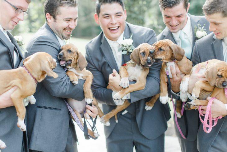 Grupo de hombres con trajes sastres color gris sosteniendo cachorros pequeños para una fotografía de bodas