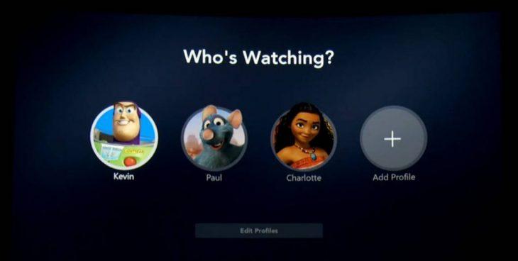 Muestra de los diferentes perfiles de la plataforma Disney Plus