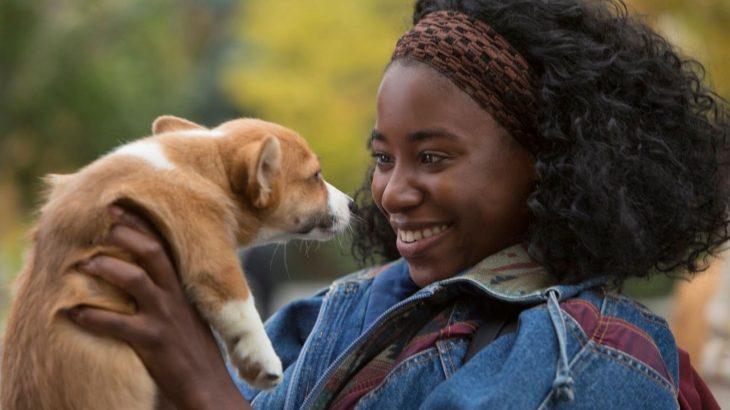 Chica sonriendo mientras sostiene a un cachorrito