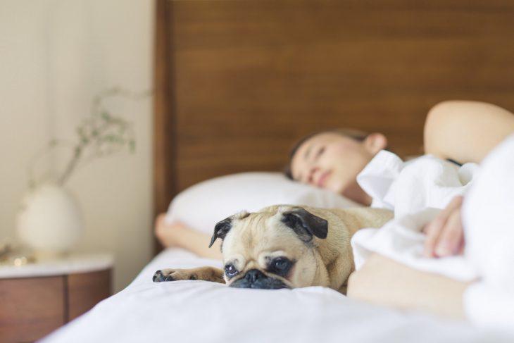 Mujer en cama durmiendo junto a su perro