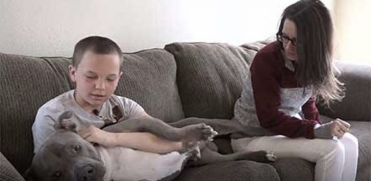 Hijo y mamá sentados en sillón café con un perro de raza pitbull color gris con blanco