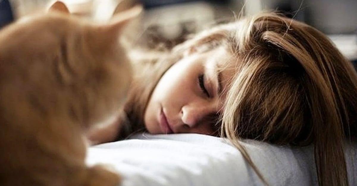 La falta de sueño aumenta el riesgo de alzheimer: estudio