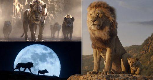 Cover Trailer del Rey León