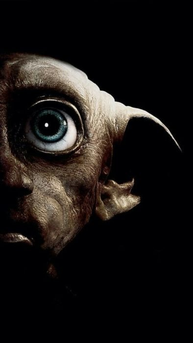 Fondo de pantalla para celular con el rostro de Dobby, Harry Potter