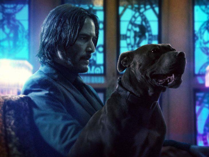 Keanu Reeves acariciando un perro sentado en un sofá, escena película John Wick: Parabellum